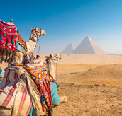 PACKAGES TO CAIRO