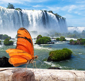 PACKAGES TO IGUAZU FALLS